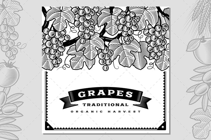 Cover Image For Retro Grapes Harvest Card Black And White