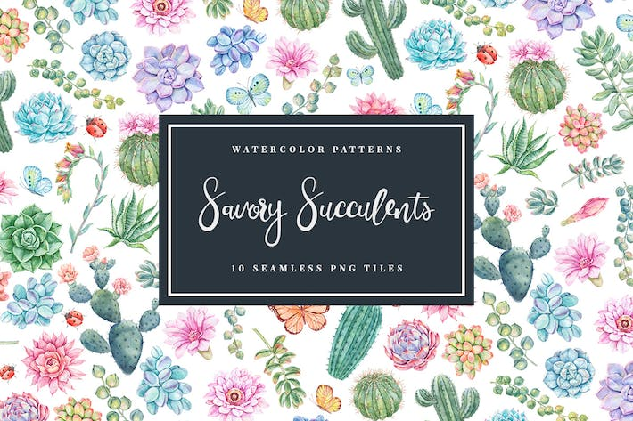 Thumbnail for Savory Succulents - Seamless Patterns
