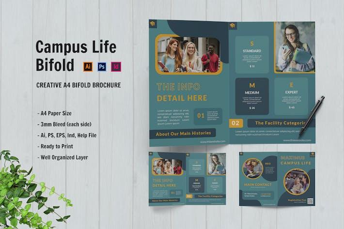 Maximus Campus Life Bifold Brochure
