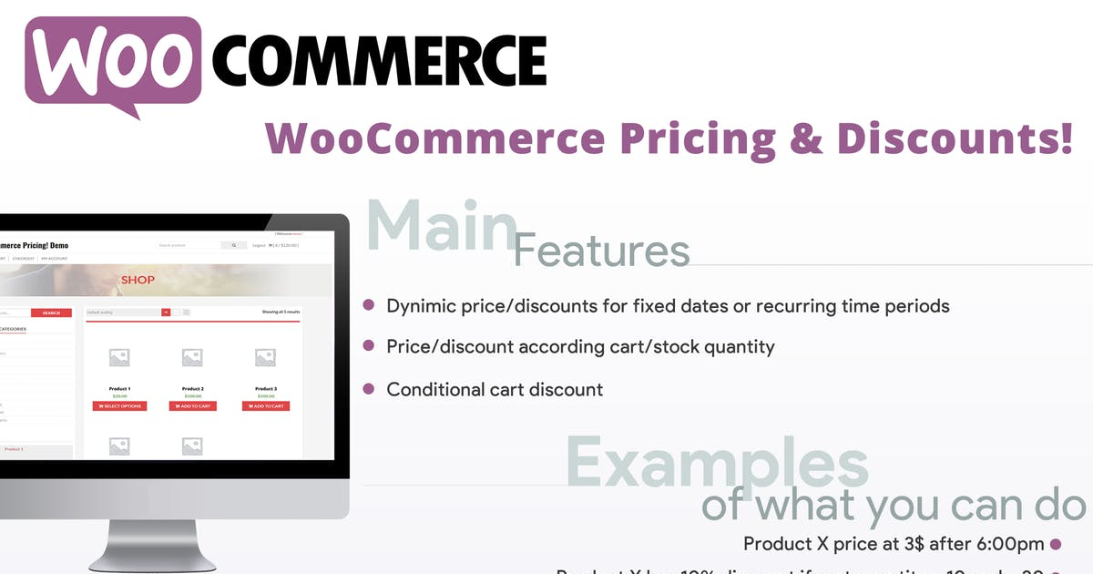 Download WooCommerce Pricing & Discounts! by vanquish