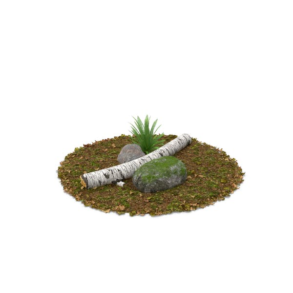Log Fern und Fels