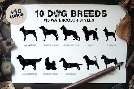 10 Dog Breeds + Bonus