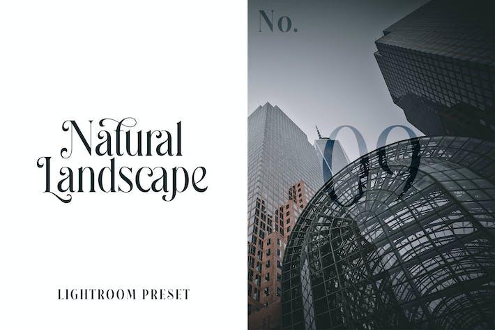 Пресет Lightroom - Природный ландшафт No.09