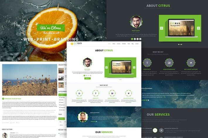 Thumbnail for Citrus - One Page PSD Template / UI Design