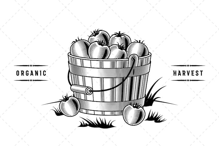 Thumbnail for Bucket Of Tomatoes Black And White