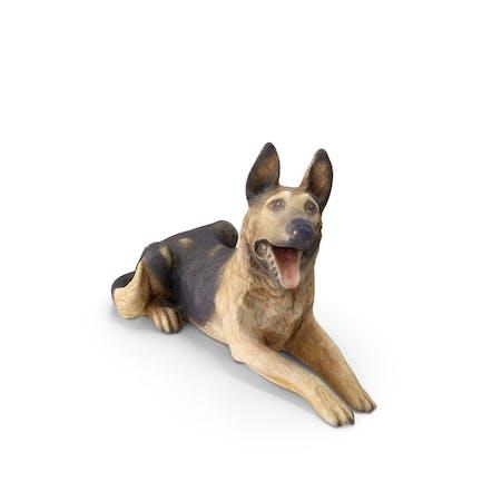 Decoración para perros