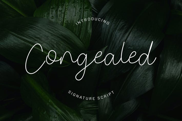 Thumbnail for Congealed - Signature Script Font YR