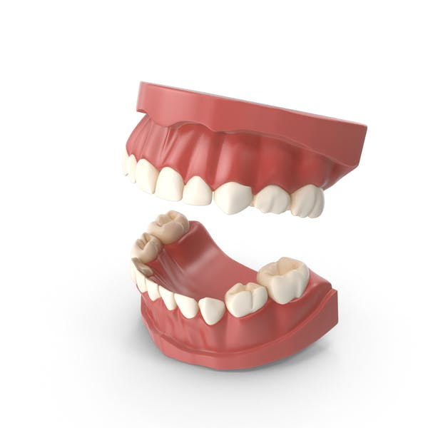 Первичные зубы