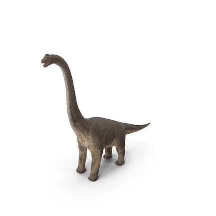 Brachiosaurus Stehende Pose