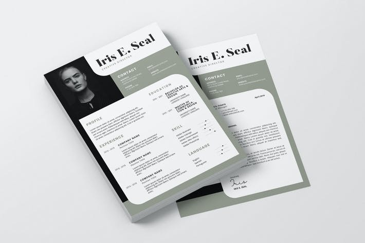 Thumbnail for Clean Minimalist CV Resume AI and PSD Flyer Vol.06