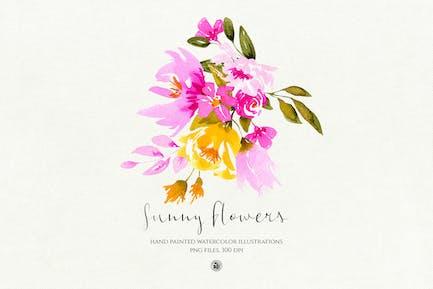Flores Soladas