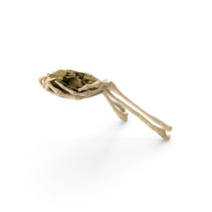 Manos esqueleto con monedas de oro
