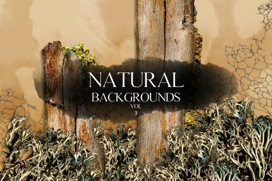 Natural Backgrounds Vol.3