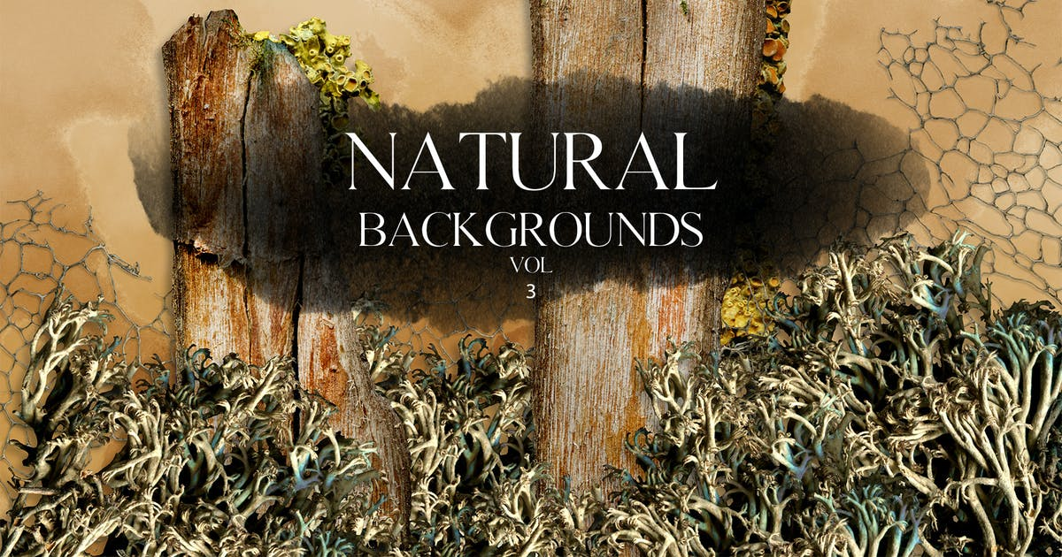 Download Natural Backgrounds Vol.3 by FreezeronMedia