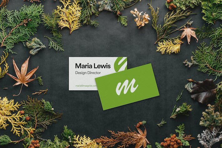 Thumbnail for Floral Business Card Mockup