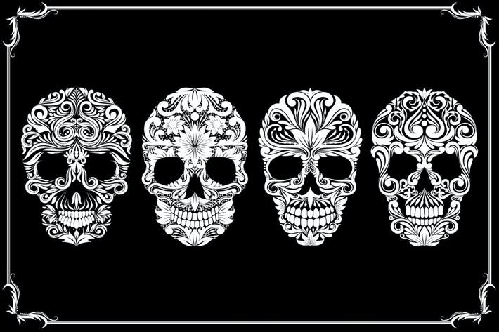 Cover Image For Skull Ornamental Collections