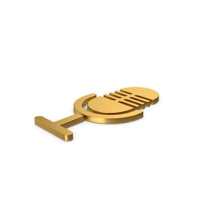 Gold Symbol Microphone