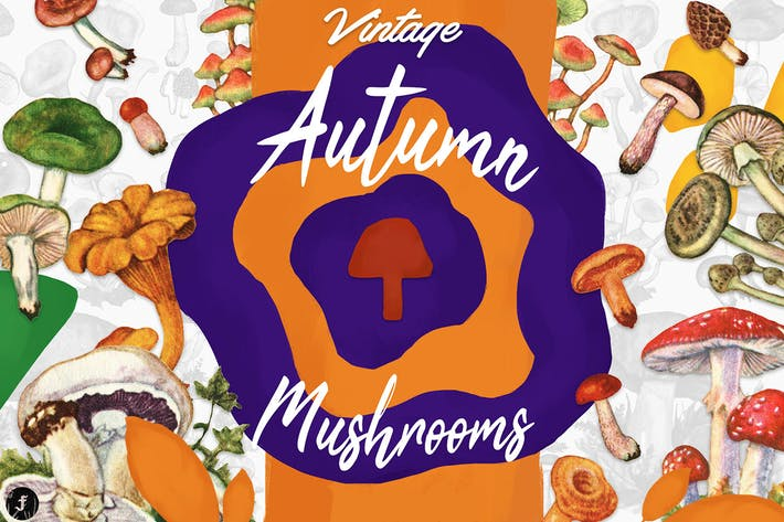 Thumbnail for Vintage Autumn Mushrooms