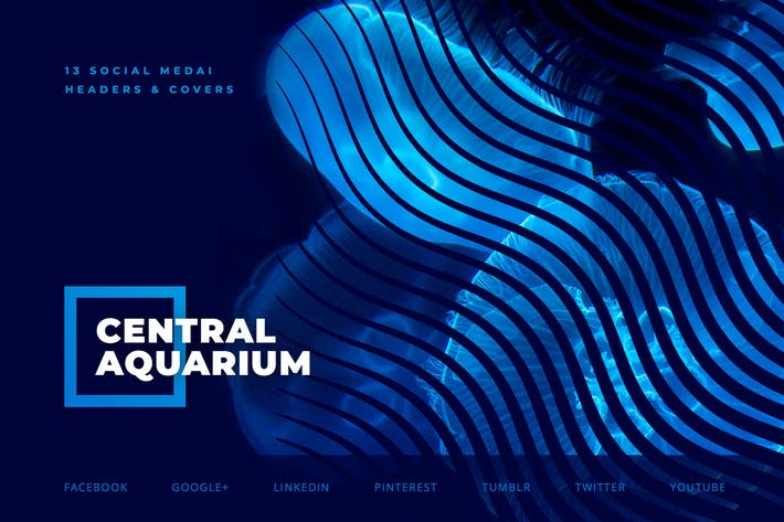 Thumbnail for Oceanarium – Social Media Kit