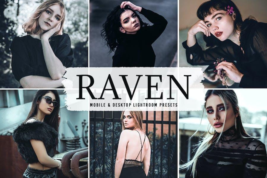 Raven Mobile & Desktop Lightroom Presets