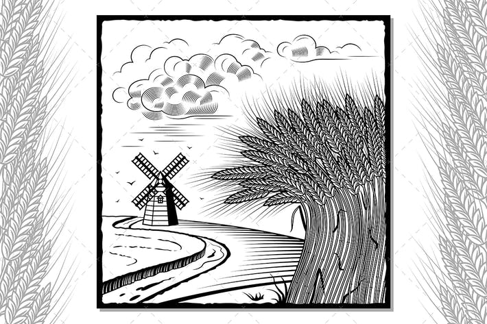 Thumbnail for Wheat Fields Black And White