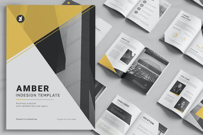 Thumbnail for Amber Business proposal