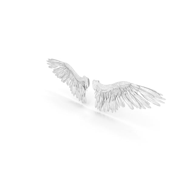 Cover Image for Angel Wings