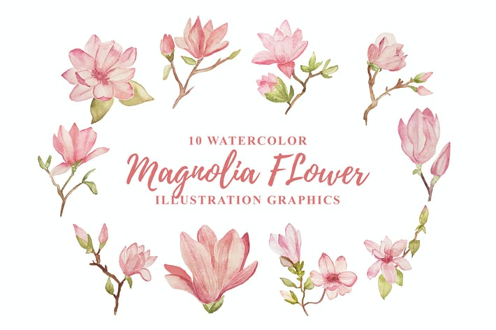 Cover Image For 10 Watercolor Magnolia Flower Illustration Graphic