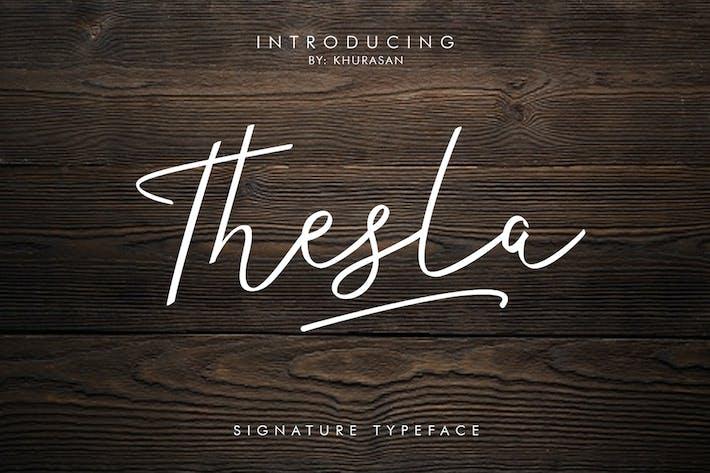 Thumbnail for Thesla Script