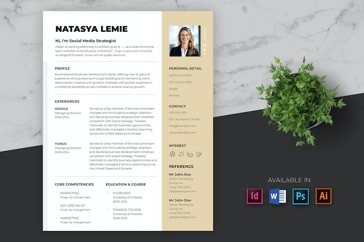 Thumbnail for Business CV / Resume Template Pro