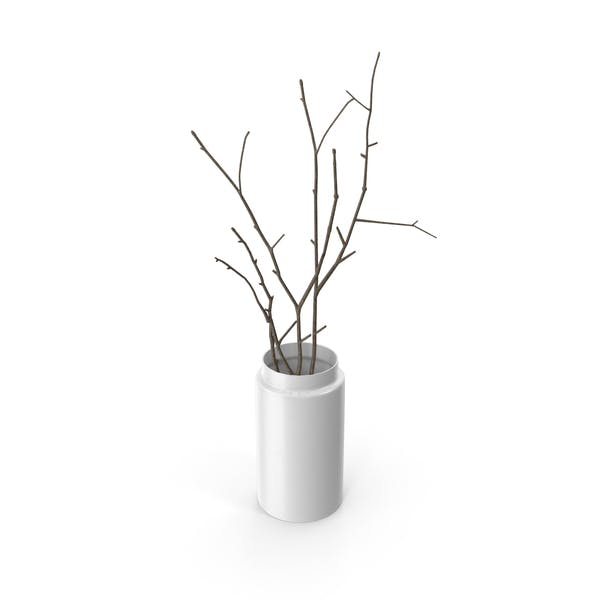 Thumbnail for Vase with Branches