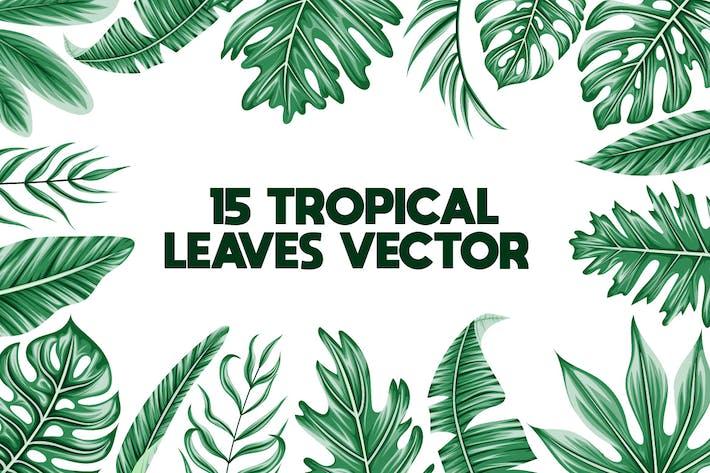 Thumbnail for 15 Tropische verlassen Vektor