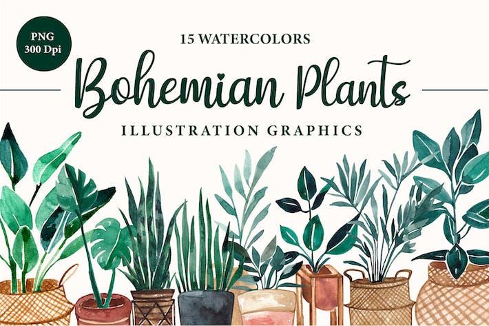 Thumbnail for Акварель растение Терракота Богемский Тропический Набор