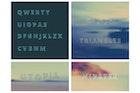 modern vector alphabetic fonts. ABC Letters