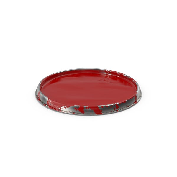 Paint Can Lid