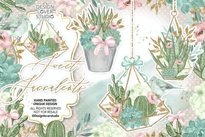 Thumbnail for Sweet Succulent design