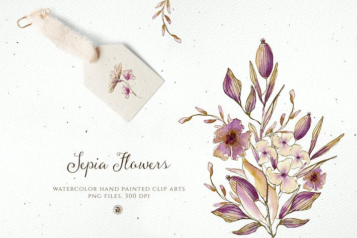 Cover Image For Sepia Flowers