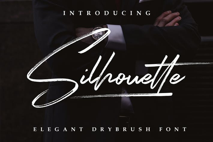 Thumbnail for Silhouette Elegant Dry Brush Font