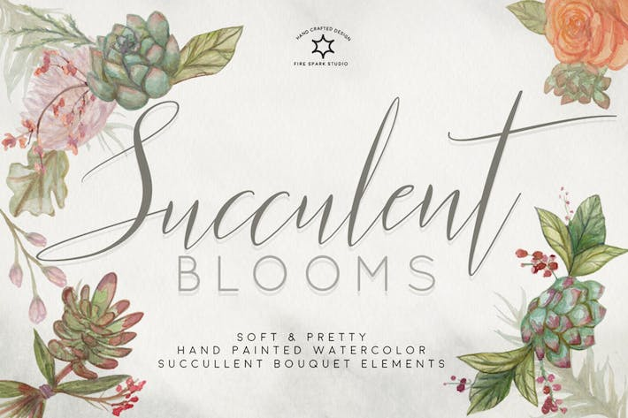 Thumbnail for Succulent Blooms