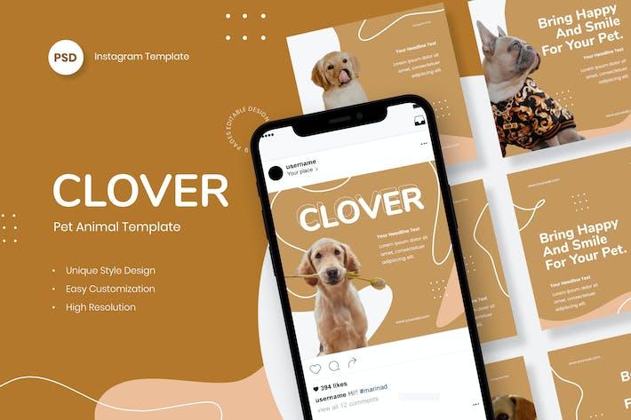 Clover - Animal de compagnie Instagram Post Modèle