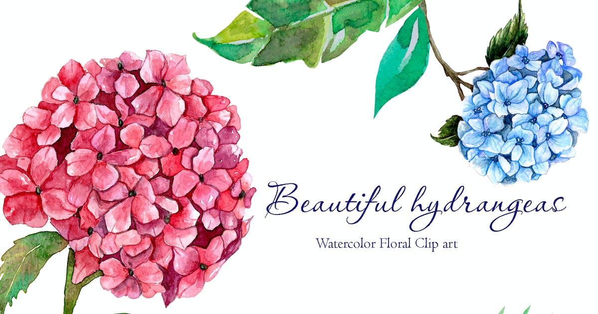 Download Beautiful Watercolor Hydrangeas by lyulkamazur