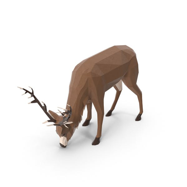 Thumbnail for Low Poly Stag