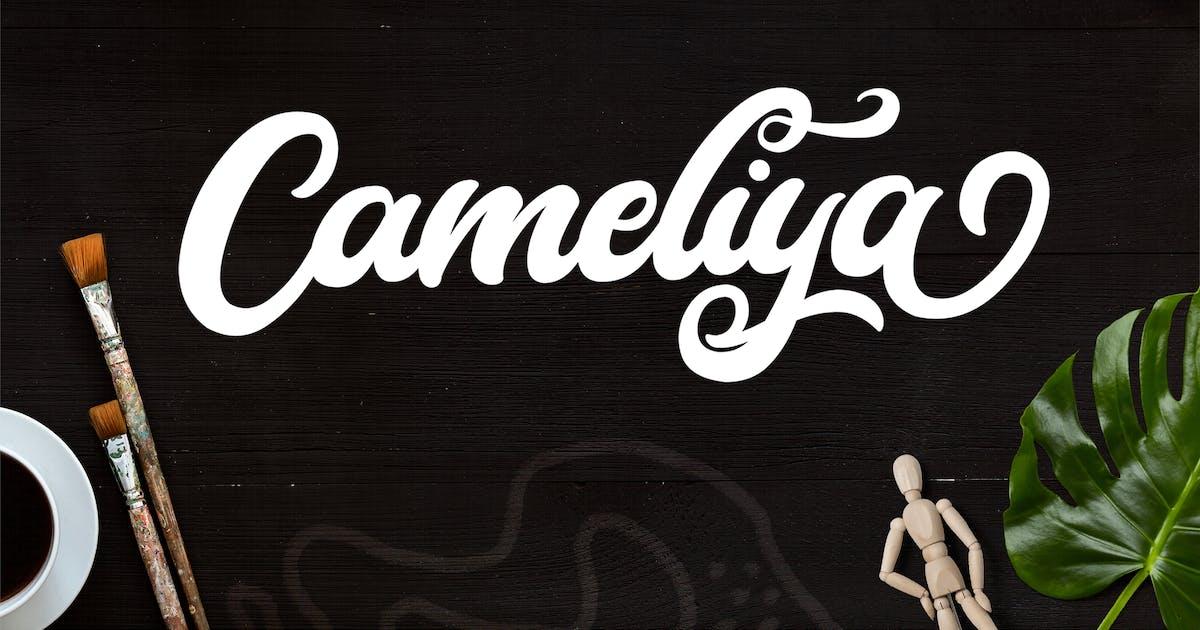 Download Cameliya - Bold Script Font by StringLabs