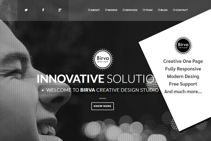 Thumbnail for Birva Design : Creative One Page Theme