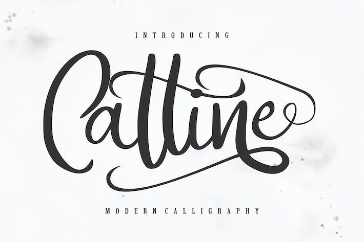 Thumbnail for Catline | Modern Calligraphy Script
