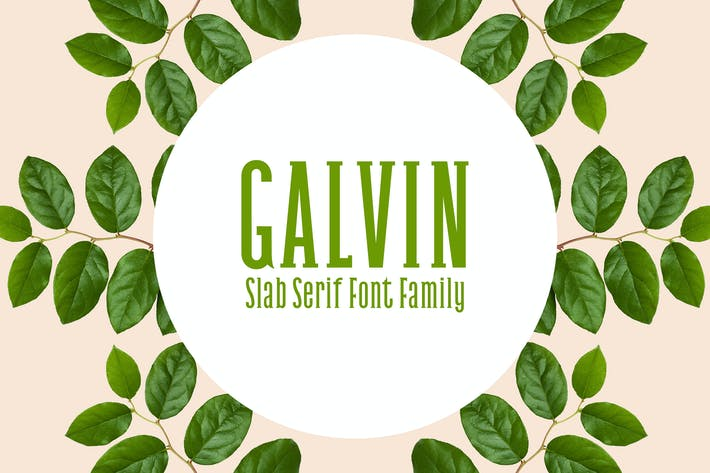 Thumbnail for Galvin Slab Serif Font Family Pack