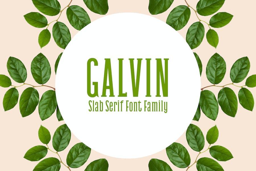 Galvin Slab Con serifa - Pack familiar de fuente