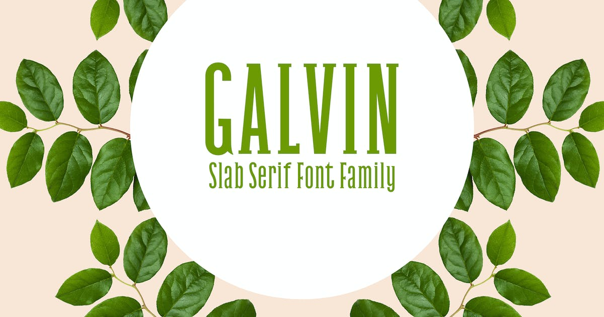 Download Galvin Slab Serif Font Family Pack by creativetacos