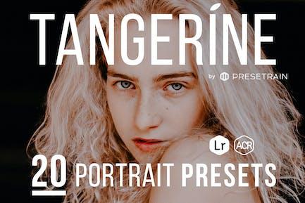 Tangerine портреПресеты для Lightroom и ACR