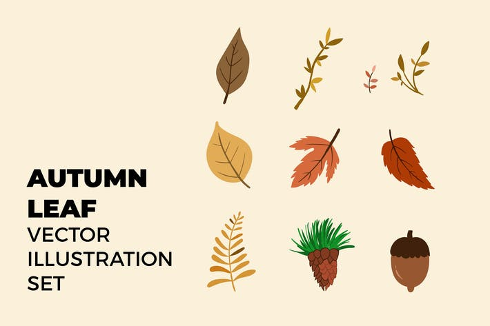 Thumbnail for Autumn Leaf Vector Illustration Set